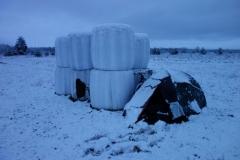 zasněžený stan na poli