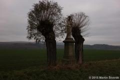 dvě vrby a Maria