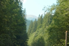 cesta na Hoverlu