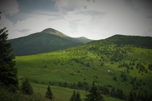 Zakarpatský národní park