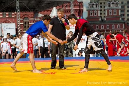 Bojové sporty