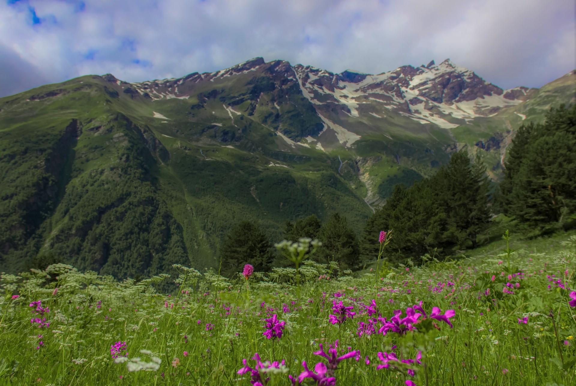 příroda Kavkazu